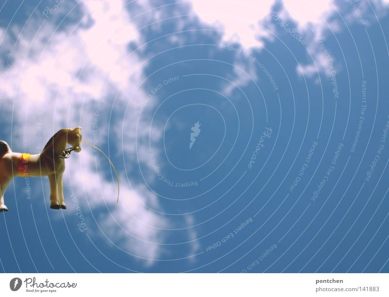 A plastic toy horse in front of a cloudy blue sky Sky Animal Horse Decoration Kitsch Odds and ends Pendant Toys Exterior shot Clouds