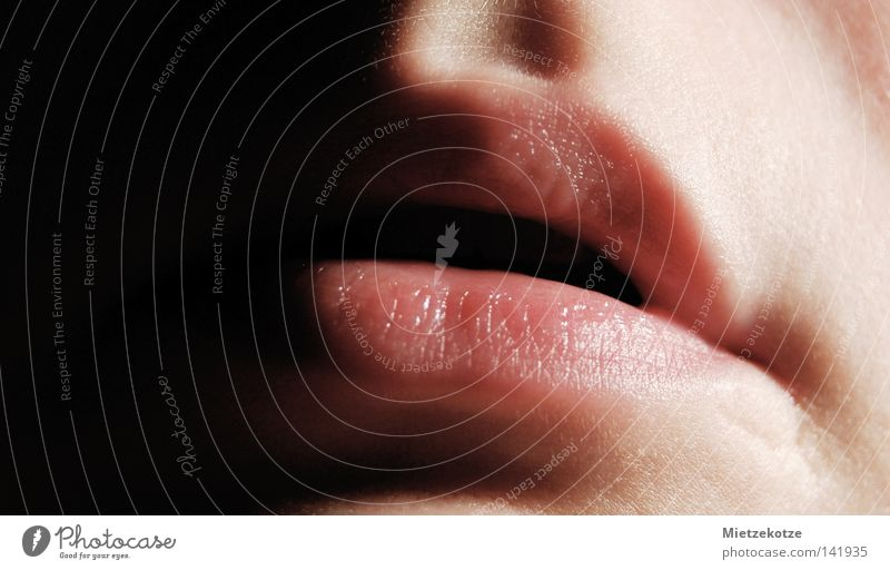 Woman Mouth Lips Kissing Caresses