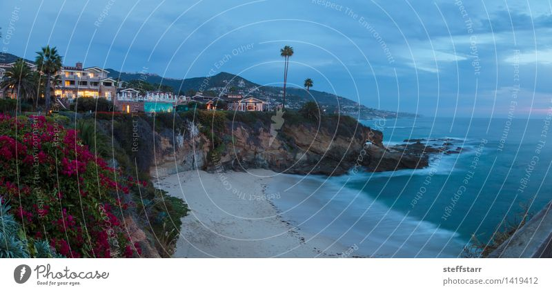 City lights view Laguna Beach at night Nature Vacation & Travel Beautiful Ocean Architecture Coast Building Elegant Success Island Bay Luxury Peaceful