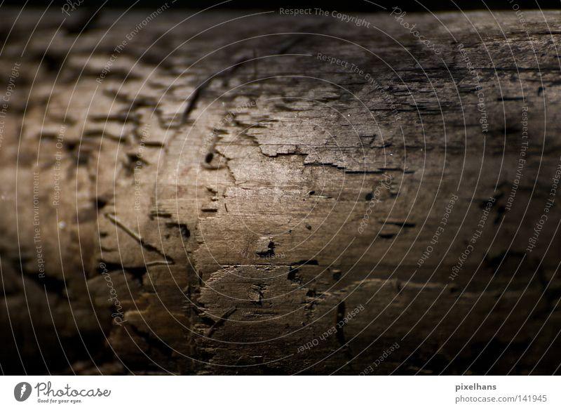 Water Summer Leaf Black Dark Wood Gray Sand Brown Glittering Dirty Arrangement Wet Cute Crack & Rip & Tear Damp