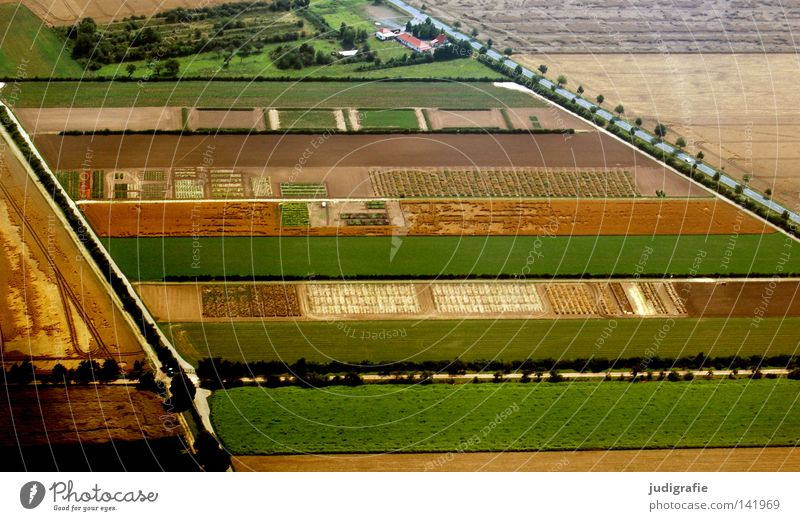Tree Green Aerial photograph House (Residential Structure) Nutrition Street Colour Meadow Landscape Line Brown Field Airplane Flying Arrangement Stripe