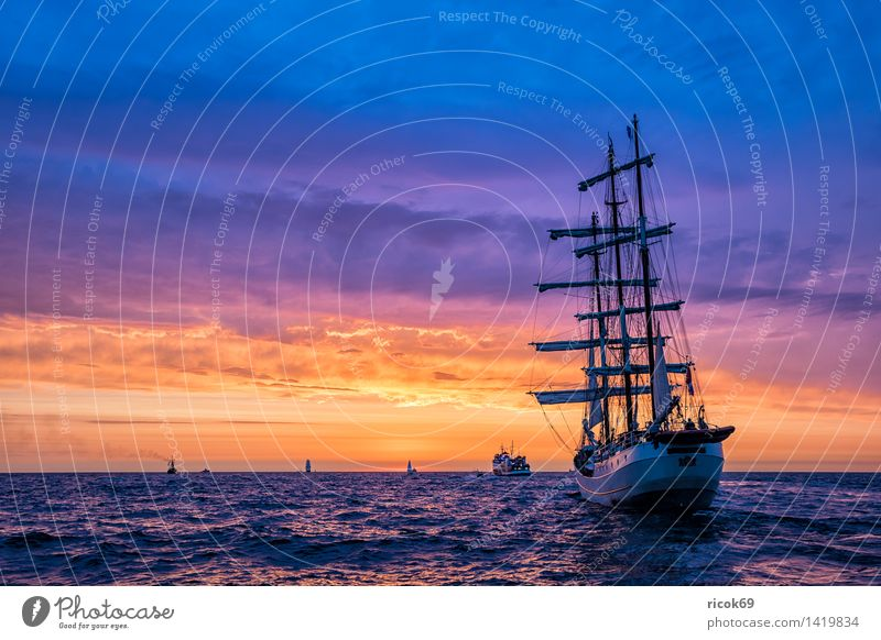 Sailing ships at the Hanse Sail Relaxation Vacation & Travel Tourism Water Baltic Sea Ocean Navigation Maritime Yellow Red Romance Idyll Nature Tradition