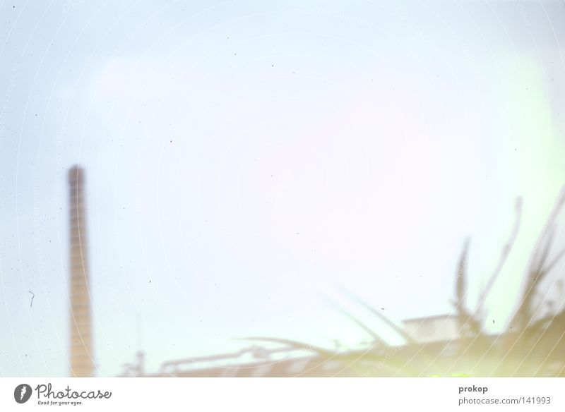 Sky Plant Bright Industry Factory Boredom Exhaust gas Chimney Digital photography