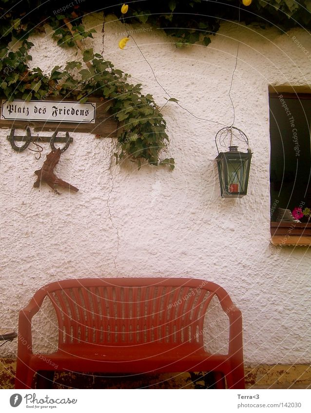 Old Flower Red Calm Loneliness Lamp Wall (building) Window Garden Freedom Gray Park Pink Signs and labeling Places