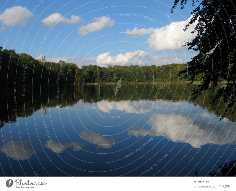 Calm Lake Symmetry Mecklenburg-Western Pomerania Forest lake