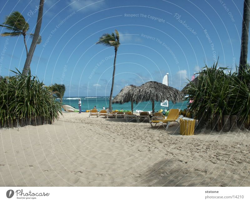 beach Punta Cana Beach Ocean Palm tree Sun roof Water Sand Wind Cuba