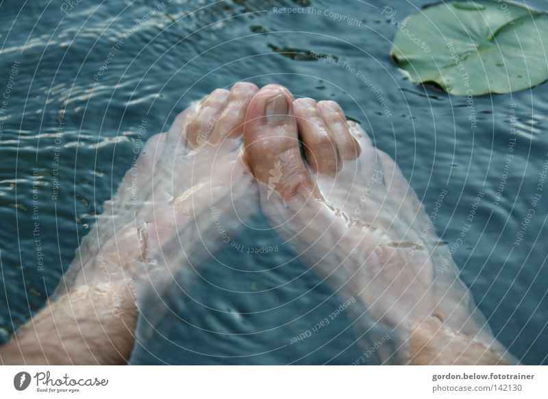 Shoes off, in the wet Water Refreshment Water lily Feet Toes Waves Toenail Cold Wash Joy Blow tenails Foot bath Barefoot