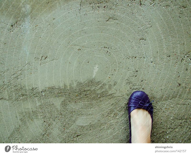 violet pompes. Wall (building) Gray Footwear Bow Autumn Woman viollette pompous ballarinas Feet Skin grey Wall (barrier)