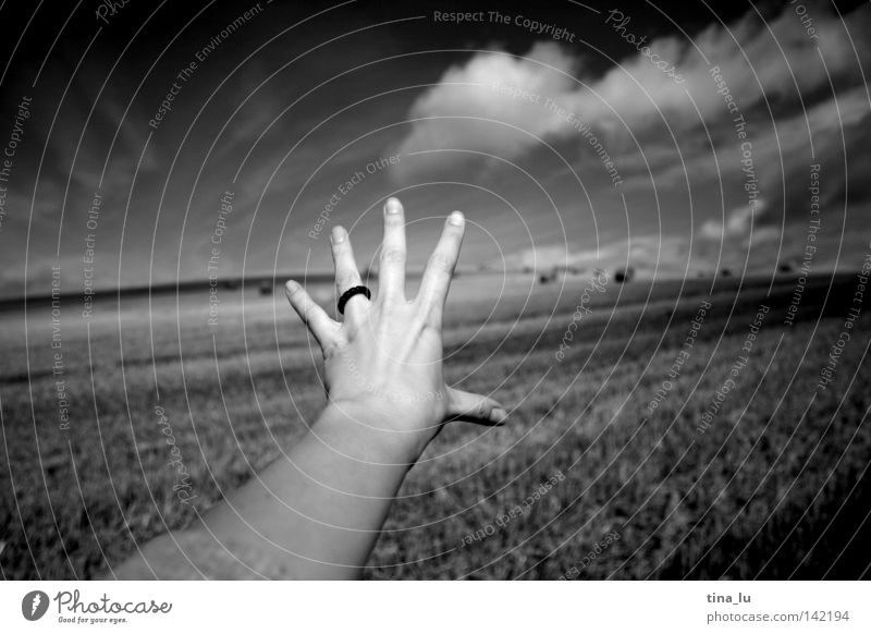 wanderlust Black White Cornfield Grain Arm Hand Catch Straw Bale of straw Far-off places Fingers Longing Clouds Meteorology Weather Wanderlust Sky Human being
