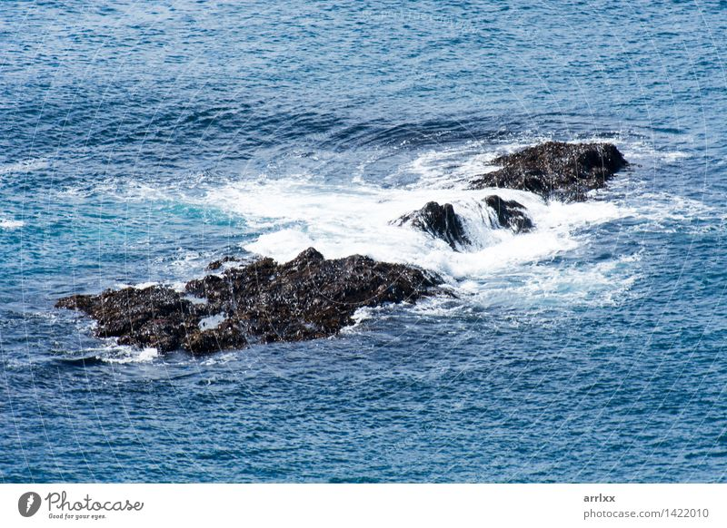 Rocks in a ocean Nature Blue Beautiful Ocean Dark Natural Coast Gray Weather Fresh Waves Speed Dangerous Cool (slang) Drop