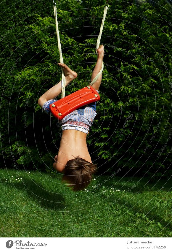 Child Summer Joy Relaxation Playing Boy (child) Garden Infancy Wild Action Athletic Hang Paradise Swing Playground Romp