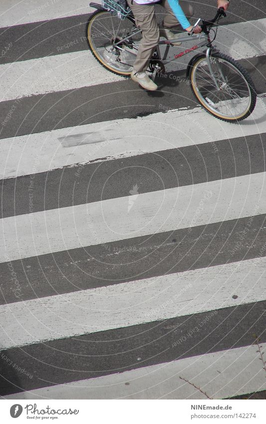 StripeRide Bicycle Zebra crossing Tire Cycling Traverse Gray White Street Speed Bicycle handlebars Human being Town Across Pants Sneakers Pedal Spokes Action