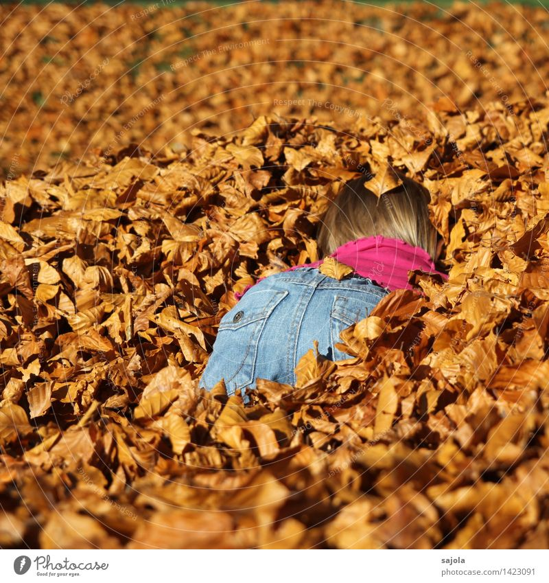 Human being Child Nature Leaf Joy Girl Environment Autumn Feminine Playing Brown Orange Park Beautiful weather Dry Bottom