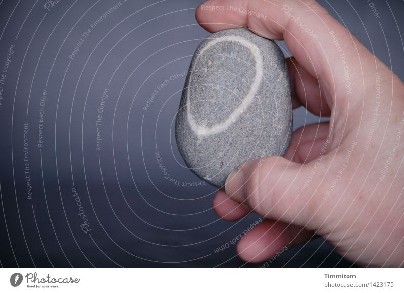 A stone. Hand Fingers Good luck charm Stone Line Simple Gray White To hold on Indicate Pebble Colour photo Interior shot Close-up Copy Space left Day Light