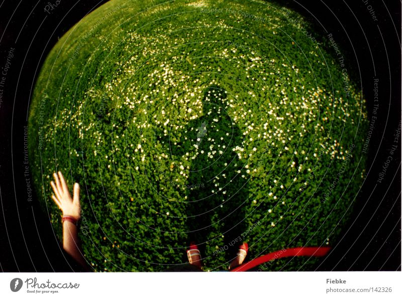 Planet Daisy Meadow Grass Flower Green White Shadow Blade of grass Hand Feet Footwear String Red Wave Salutation Hello Sphere Fisheye Lomography Plant