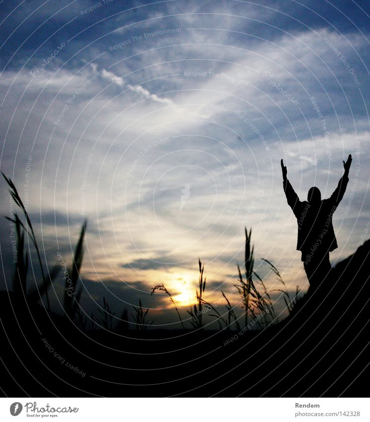Sky Youth (Young adults) Beautiful Sun Clouds Joy Dark Life Meadow Grass Happy Freedom Moody Party Power Free