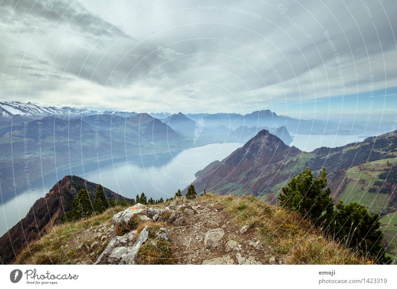 We did it! Environment Nature Landscape Autumn Alps Mountain Peak Lake Exceptional Natural Blue Switzerland Tourism Hiking trip Lake Lucerne Colour photo
