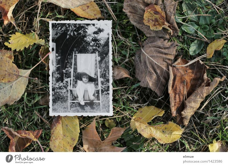 Old Loneliness Leaf Calm Far-off places Sadness Autumn Emotions Senior citizen Meadow Grass Time Dream Leisure and hobbies Infancy Photography
