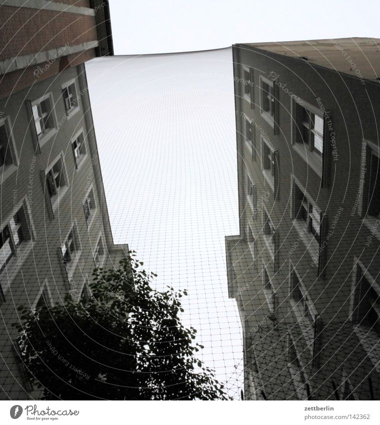 House (Residential Structure) Berlin Window Facade Net Border Obscure Narrow Terrace Divide Tenant Cage Courtyard Steep Landlord Interior courtyard