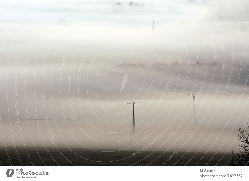 About country Nature Landscape Autumn Fog Field Wait Gray Calm Apocalyptic sentiment Cold Surrealism Covered Hide Unclear Electricity Electricity pylon Cable