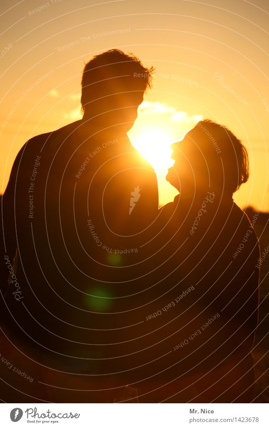 Sun makes you happy Vacation & Travel Freedom Masculine Feminine Couple Partner 2 Human being Environment Summer Beautiful weather Happy Warmth Yellow Gold Joy