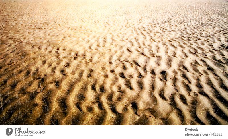 Water Ocean Beach Lanes & trails Sand Line Coast Earth Arrangement Ground Desert Tracks Dry Footprint Beach dune Shriveled