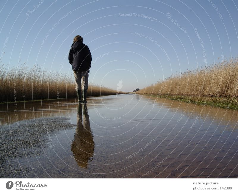 "Street ""Land-unter"" Water Puddle Hiking Boots Common Reed Rømø North Sea Deluge Flood Woman below ground"