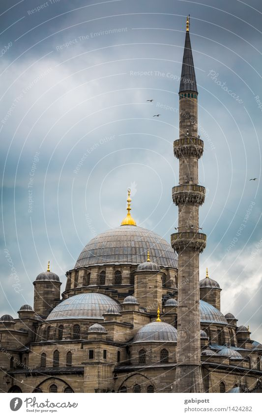 Believe and let believe Vacation & Travel Tourism Trip Far-off places Sightseeing City trip Mosque Blue Mosque Istanbul Turkey Tower Manmade structures Building