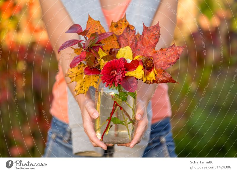 Girl with autumn bouquet. Beautiful Relaxation Hand Red Joy Yellow Life Emotions Funny Feminine Happy Lifestyle Garden Freedom Moody Bright