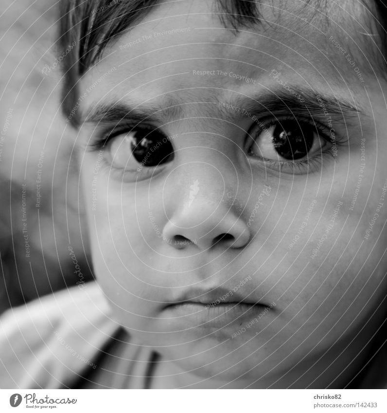 Child White Black Eyes Boy (child) Think Baby Small Sweet Observe Curiosity Concentrate Fatigue Wrinkles Meditative Testing & Control