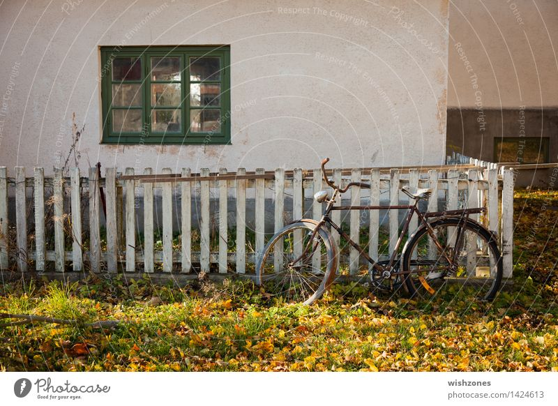 Old Green White Relaxation Calm Window Yellow Wall (building) Autumn Grass Style Wall (barrier) Wood Time Facade Metal