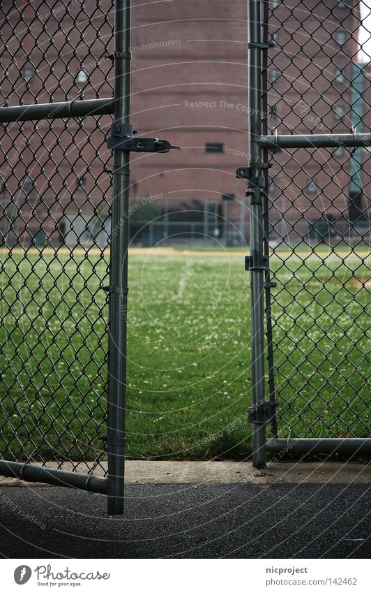 Come on in Boston Baseball Grating Fence Wire netting Entrance Welcome Admission Hesitate Playing Trust Confine confinement playground Exclude Brave Timidity