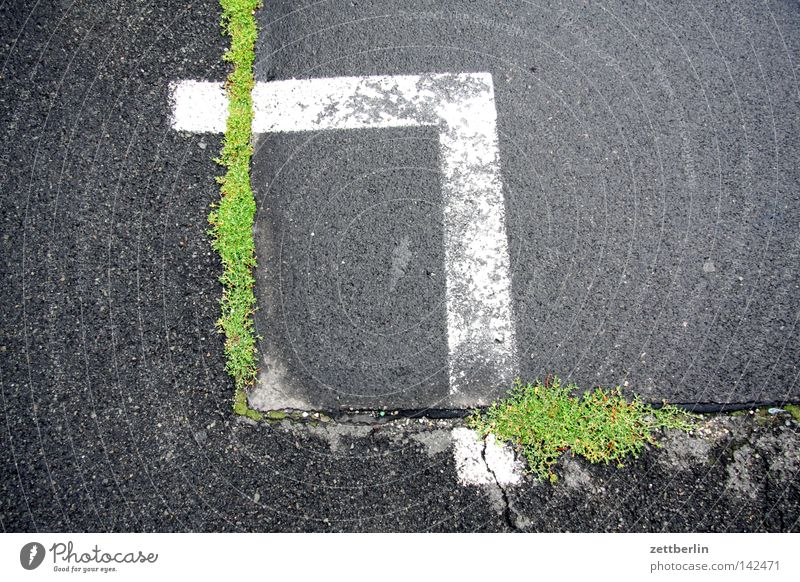 Right angles Corner Signs and labeling Parking lot Asphalt Tar Crack & Rip & Tear Nature Power Force Maturing time Hollow Grass Traffic infrastructure