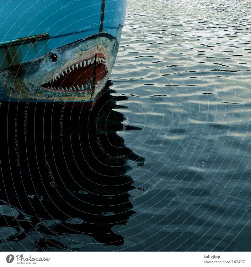 Blue Water Ocean Coast Watercraft Waves Food Nutrition Fish Fish Net Map Set of teeth Profession Catch Navigation