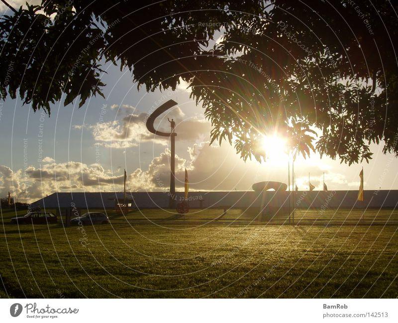 Tree Sun Clouds Meadow Lawn Monument Landmark Dusk Brazil South America Golden section Brasília
