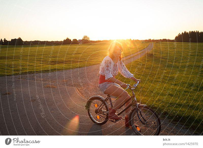 LAST RAYS Vacation & Travel Trip Adventure Nature Field Cycling Lanes & trails Joy luck Joie de vivre (Vitality) Hippie Flower power Colour photo Exterior shot