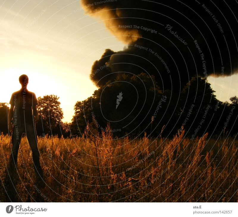 Human being Man Nature Youth (Young adults) Sky Tree Sun Blue Black Clouds Meadow Field Fear Blaze Smoke Guy