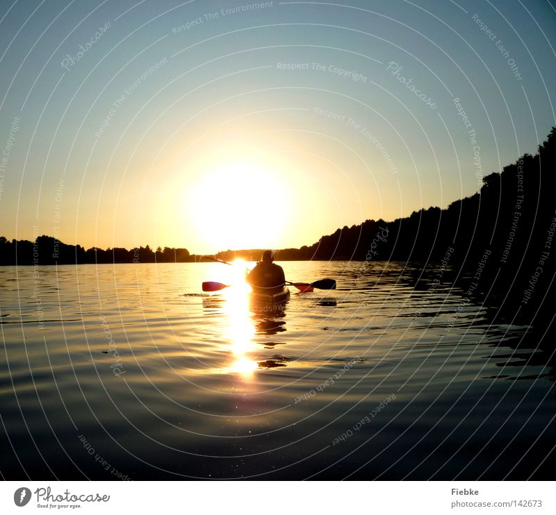 silent Sun Sunset Evening Lake Water Watercraft Kayak Paddling Driving Vacation & Travel Paddle Waves Forest Tree Sky Blue Lighting Brilliant Reflection