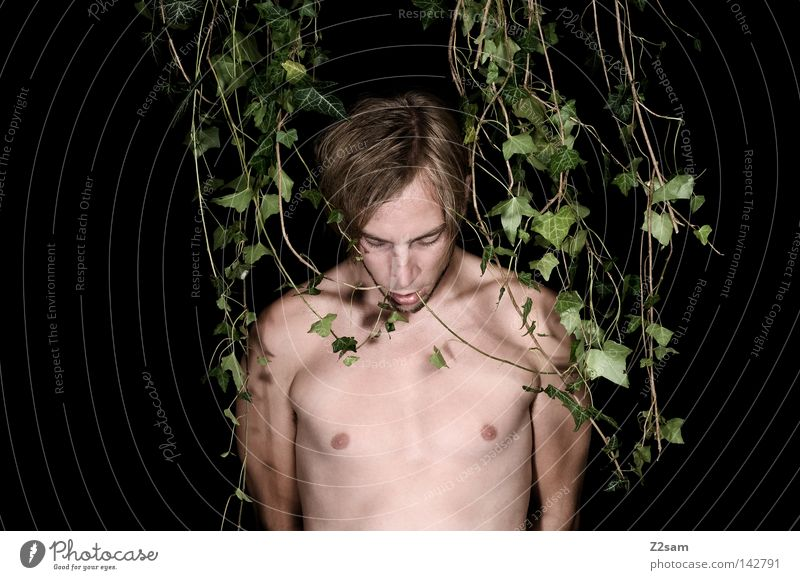 Human being Man Nature Green Plant Calm Face Loneliness Forest Head Hair and hairstyles Style Body Modern Masculine Crazy
