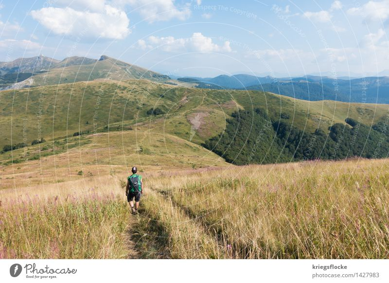 The Hiker Healthy Well-being Calm Vacation & Travel Adventure Far-off places Freedom Mountain Hiking Nature Animal Earth Beautiful weather Grass Meadow Field