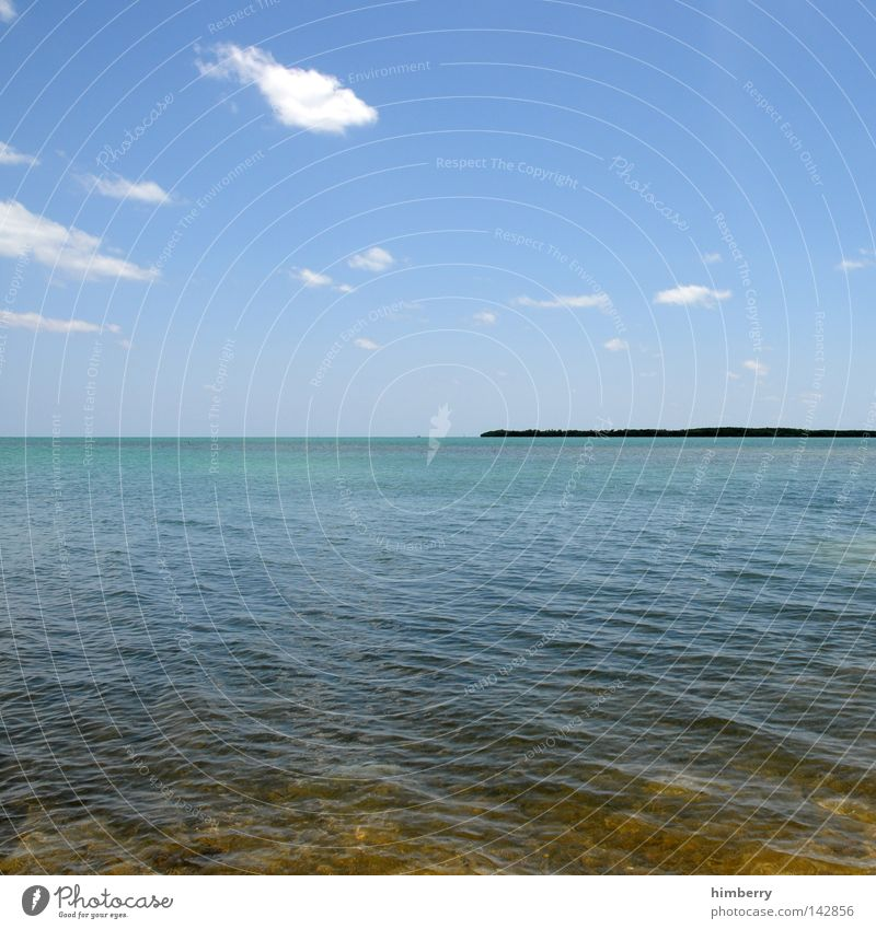 Water Vacation & Travel Summer Ocean Relaxation Weather Horizon Background picture Island USA Turquoise Beautiful weather Americas Paradise Blue sky Florida