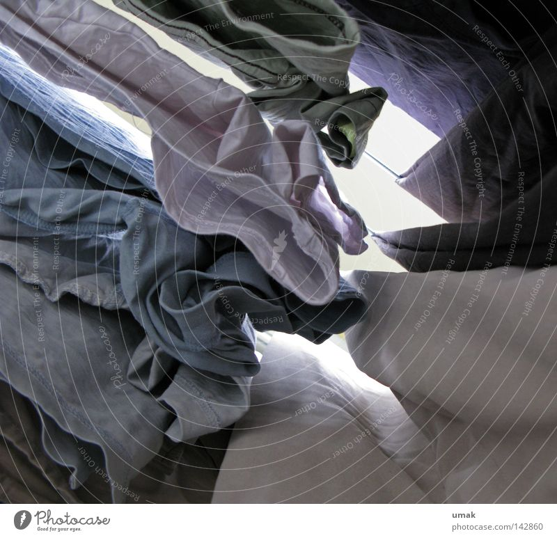 sluiced Laundry Rope T-shirt Clean Dry Washing day Blue Light blue White Gray Tumble dryer Clothing hung
