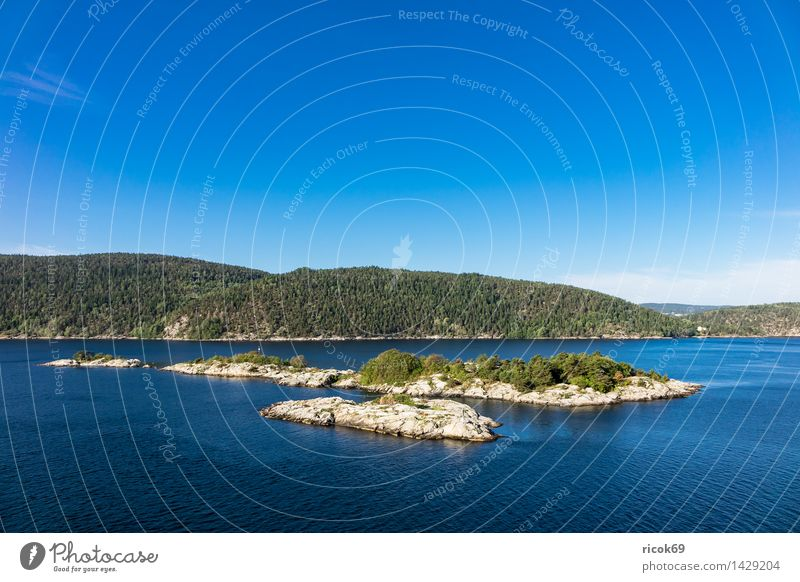Islands in the Oslofjord Relaxation Vacation & Travel Nature Landscape Water Clouds Tree Forest Rock Coast Fjord Tourist Attraction Stone Blue Green Idyll