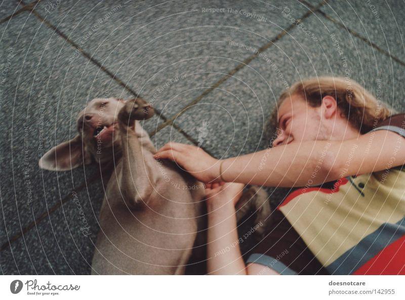 Man Joy Love Animal Playing Dog Friendship Blonde Adults Analog Cute To enjoy Mammal Paw Pet Striped