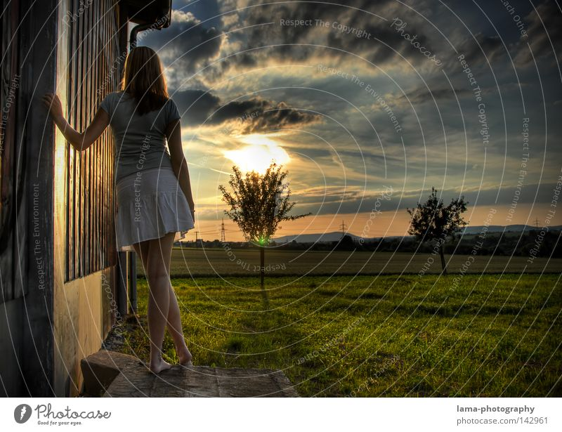 Southern Valley Hope Desire Expectation Wait Stand Absentminded Dream Daydream Think Thought Loneliness Sky Sun Dazzle Sunset Clouds Tree Field Woman Skirt