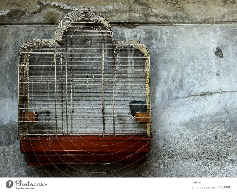 Wall (building) Freedom Air Metal Facade Captured Crate Rod Tin Grating Moral Cage Torture Unnatural Keeping of animals Bird's cage