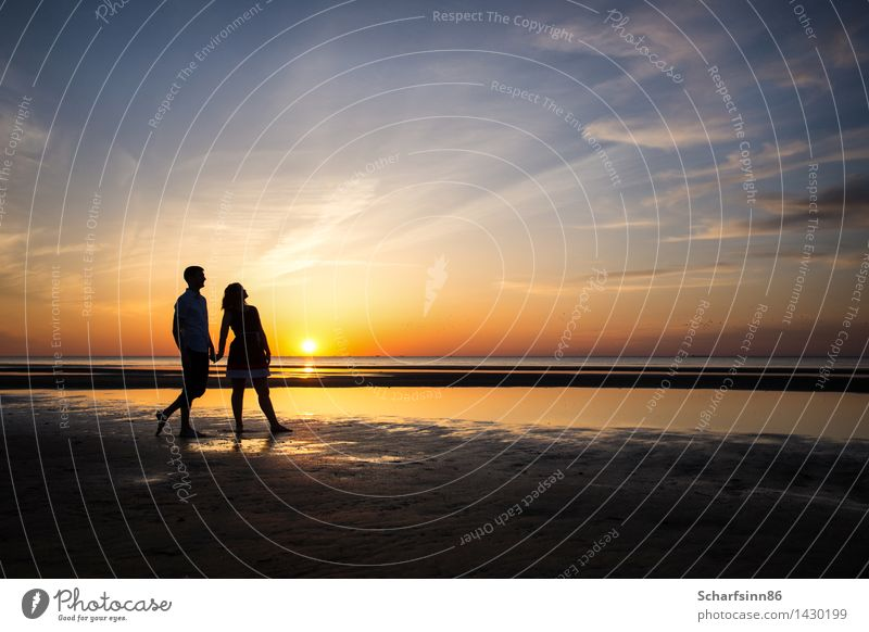 couple in love, silhouettes Human being Woman Vacation & Travel Youth (Young adults) Man Beautiful Summer Young woman Water Sun Ocean Relaxation Young man Beach