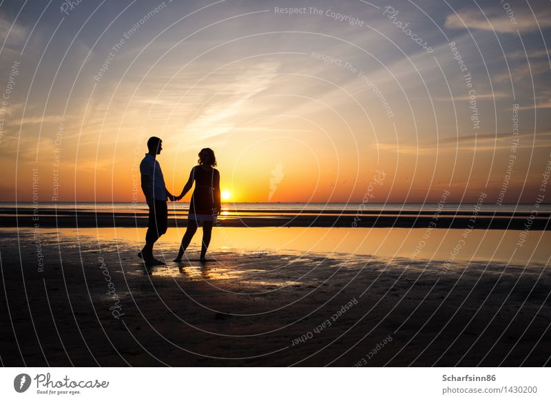 couple in love, silhouettes Lifestyle Vacation & Travel Tourism Freedom Summer Sun Beach Ocean Island Human being Family & Relations Couple Partner