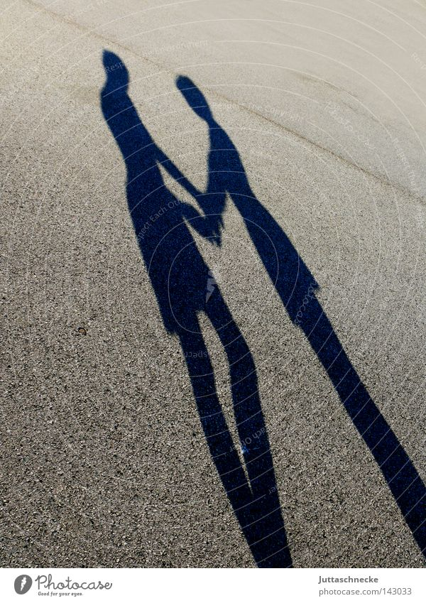 Woman Man Love Couple Friendship Contentment In pairs Stand Silhouette Shadow Find Like Hold hands