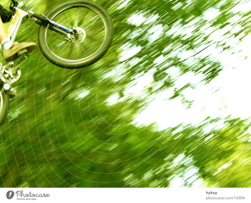 flying high Tree Mountain bike Jump Tall Speed Freestyle Green Ramp Extreme sports Nature Far-off places Bicycle suspension fork Movement